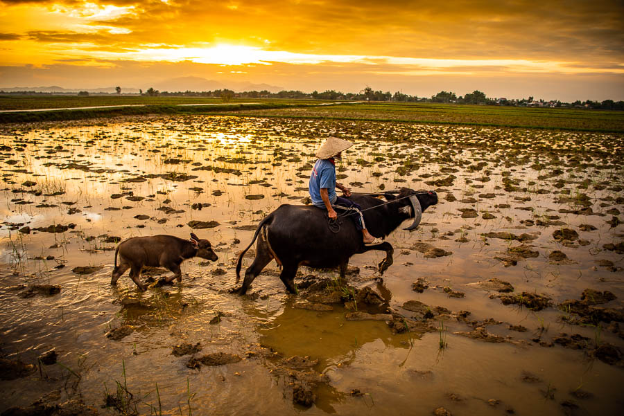 Countryside & Culture Photography Tour